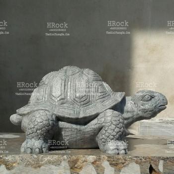 Con Rùa Bằng Đá